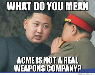 acme weapons company in north korea